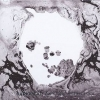 n°5</br>A MOON SHAPED POOL</br>de RADIOHEAD