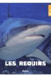Patrick DAVID - Les requins