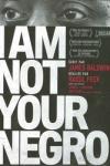 I AM NOT YOUR NEGRO</br>(réal : Raoul PECK)