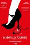 Roman Polanski - LA VÉNUS À LA FOURRURE