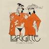 conseil-CD-BRIGITTE-AIMES