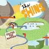 conseil-CD-SHINS-CHUTES