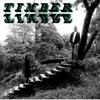 conseil-CD-TIMBERTIMBRE-TIMBER