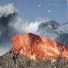 conseil-CD-WULYF-FIRE