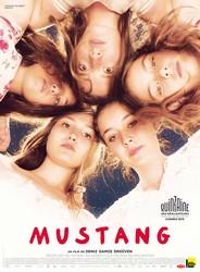 CONSEILS-DVD-ERGUVEN-MUSTANG