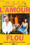 AMOUR FLOU (L')(réal :Romane Bohringer, Philippe Rebbot)