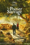 POIRIER SAUVAGE (Le)(réal : Nuri Bilge Ceylan)